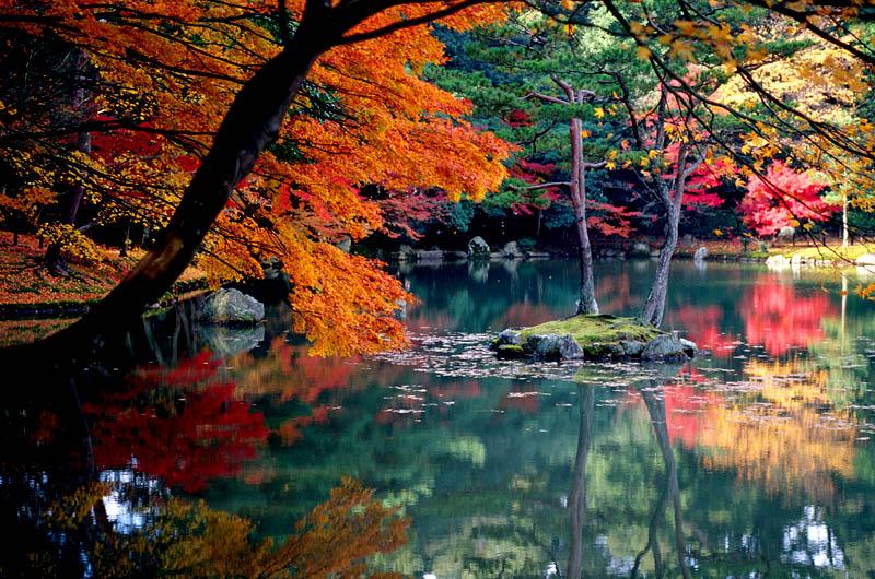 Flash sul mondo di tutto di pi l autunno in for Case del giappone